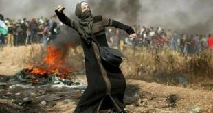 فلسطينتىة